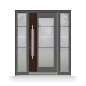 Haustür mit Sicherheitsglas, LED-Beleuchtung und Fingerscan